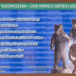 """Silver Bear 2004"" - Economy leader special award"